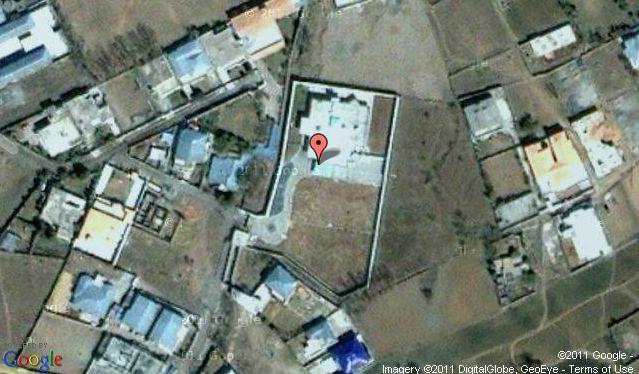 osama in laden monkey in. Osama bin Laden Joins Global